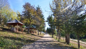 New marked trail to Trebević to be laid soon